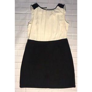 Ann Taylor Loft black and ivory dress